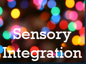 Sensory Integration Questionnaire