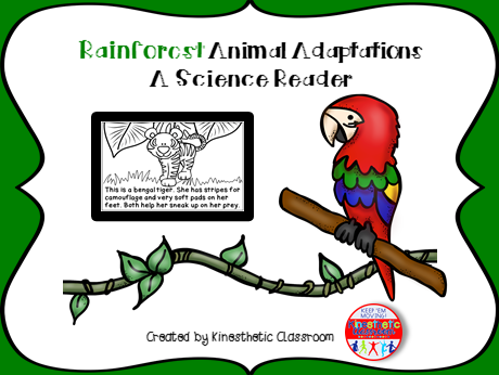 Rainforest Animal Adaptations - A Science Reader