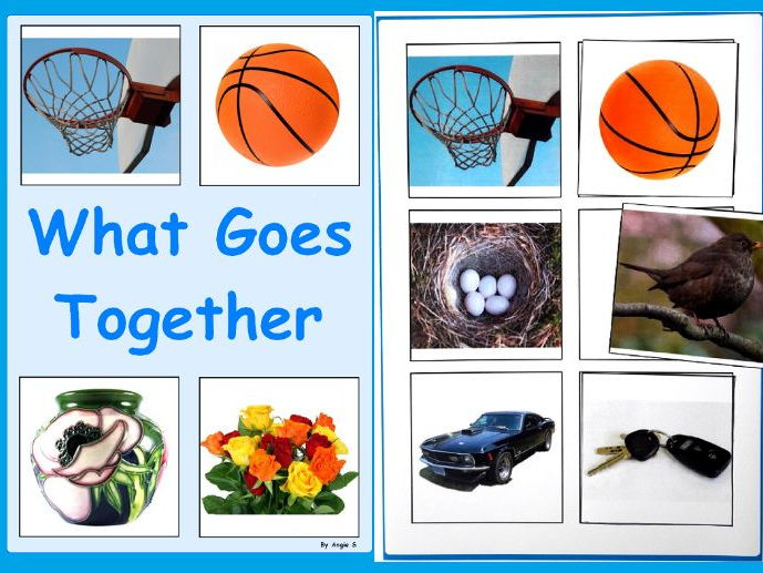What Goes Together - Association Photo Flash Cards