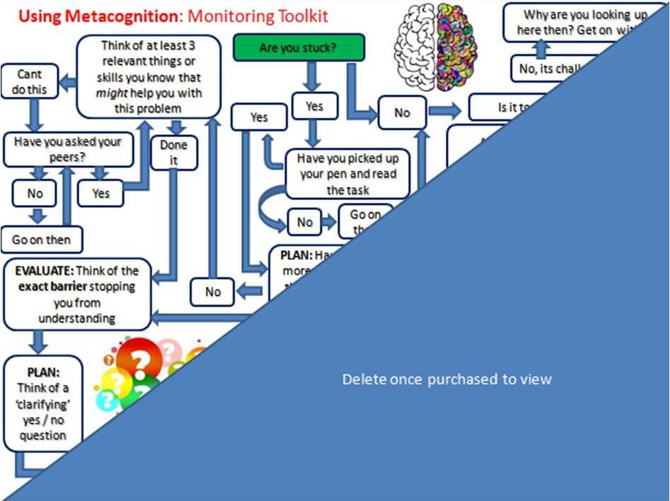 Metacognition: Flow Chart Toolkit
