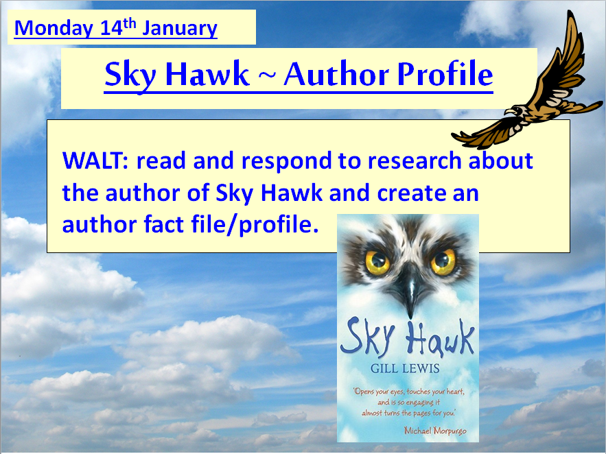 Sky Hawk by Gill Lewis ~ TEN Ready-to-use lessons for Chapters 1 - 19 **NEW & UPDATED**