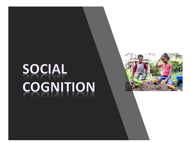 AQA psychology Cognition and development- Social cognition