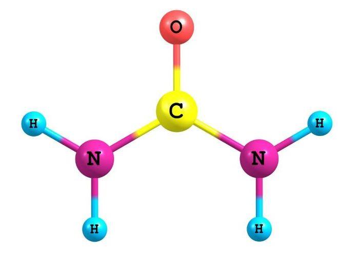 OCR Chemistry Representing Organic molecules
