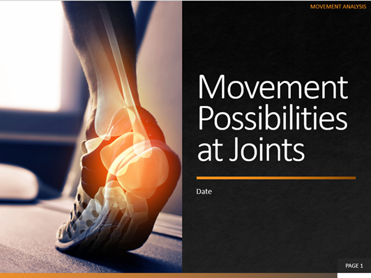 3. Movement Possibilities at Joints