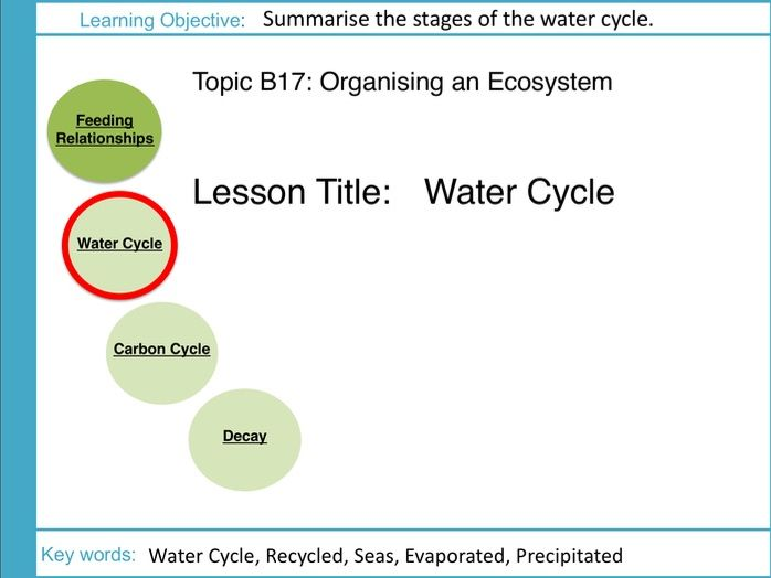 AQA GCSE: B17 Ecosystems: L2 Water Cycle