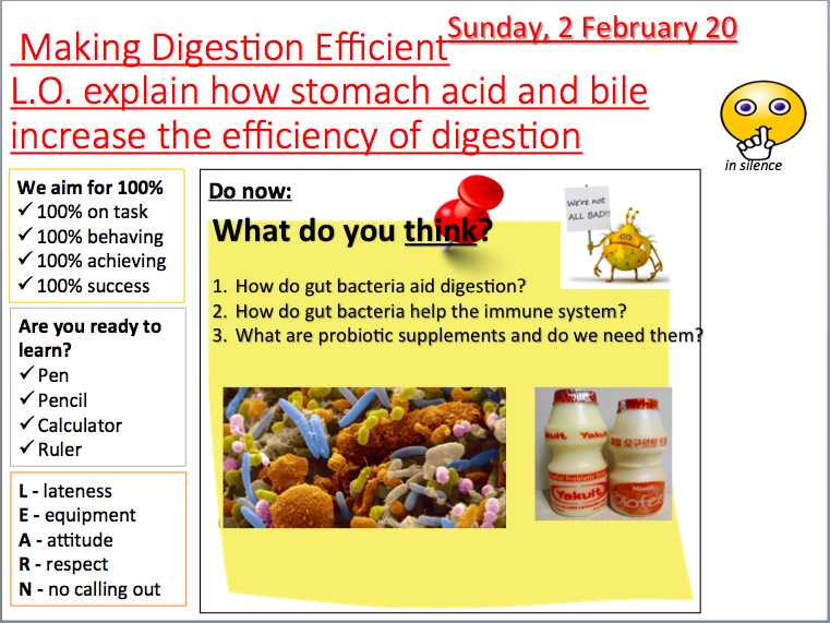 AQA B3.1 - 3.7 Organisation and the digestive system