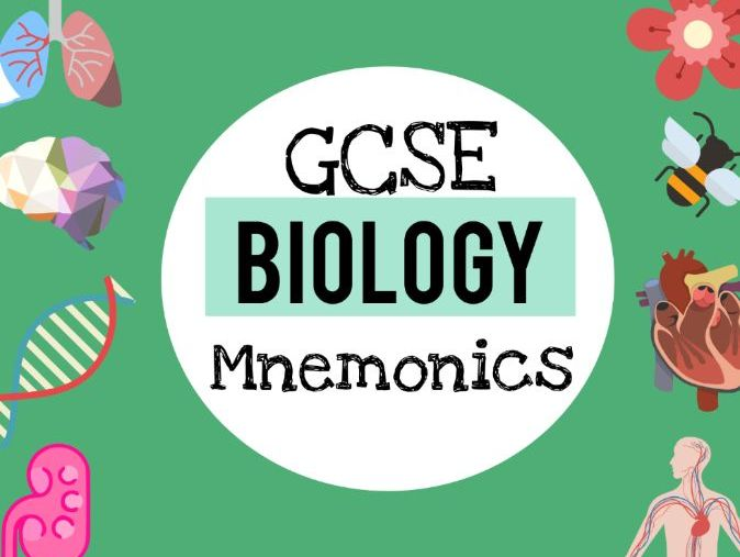 GCSE Biology Mnemonics - liven up your revision!