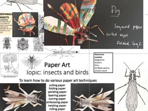 A KS3 project: Year 8 or 7 drawing and making insects out of different paper craft techniques