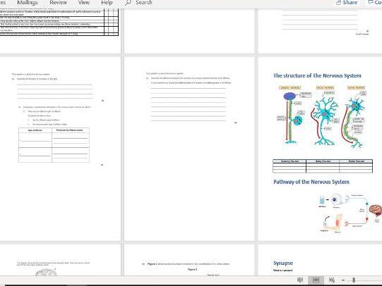 GCSE Homeostasis Booklet AQA