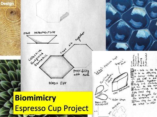 Biomimicry Espresso Cup Design Project
