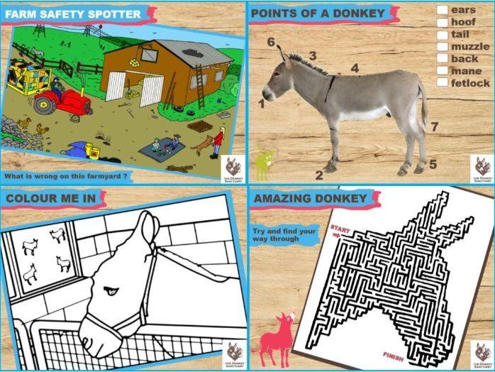 Donkey Sanctuary Home Schooling Aids