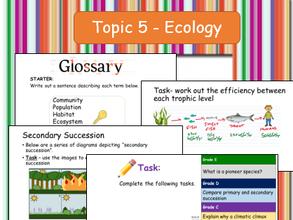 Edexcel  Topic 5 Ecosystems, Productivity and Succession