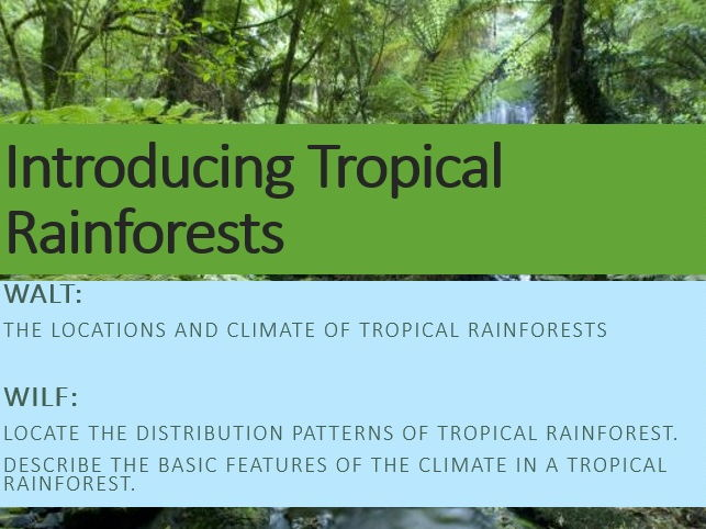 Introducing Rainforests
