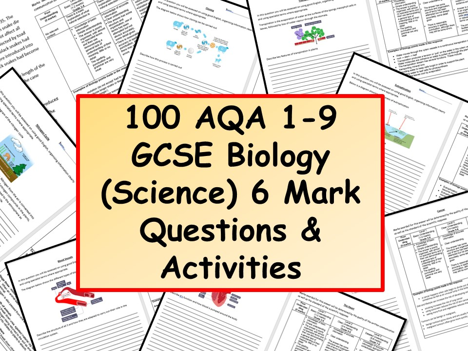 Carbon dating gcse questions english aqa
