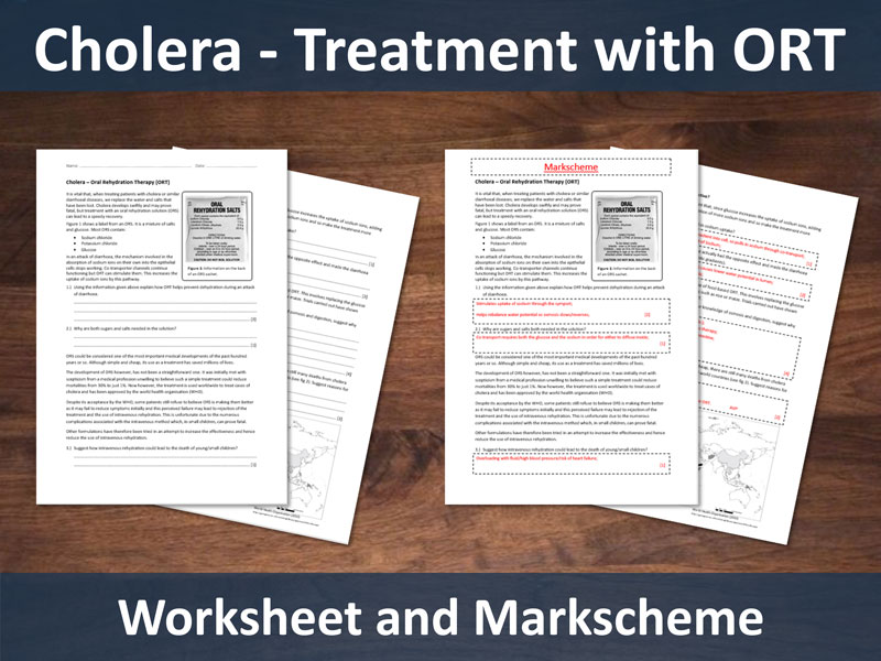 Cholera - Treatment with Oral Rehydration Salts (ORS) Worksheet with Markscheme (A level)