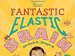 'Your Fantastic Elastic Brain' Scheme of Work for ages 4-11