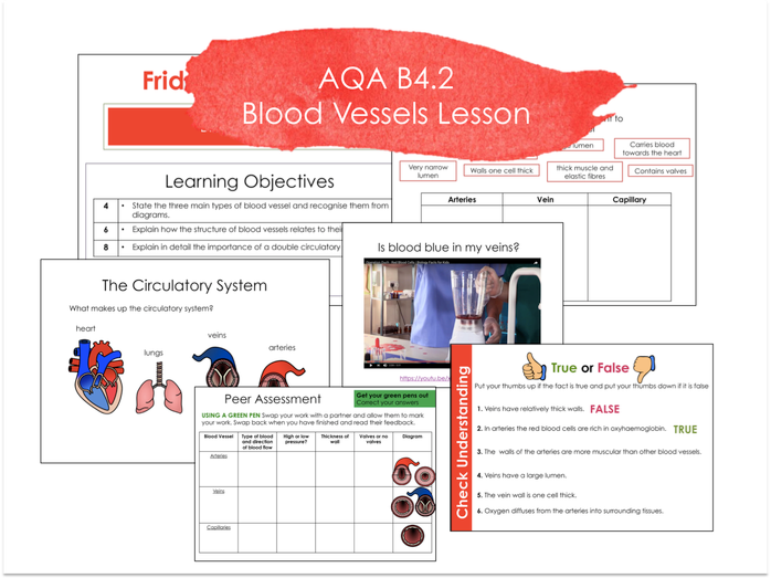 B4.2 Blood Vessels AQA 9-1 Lesson- No Prep