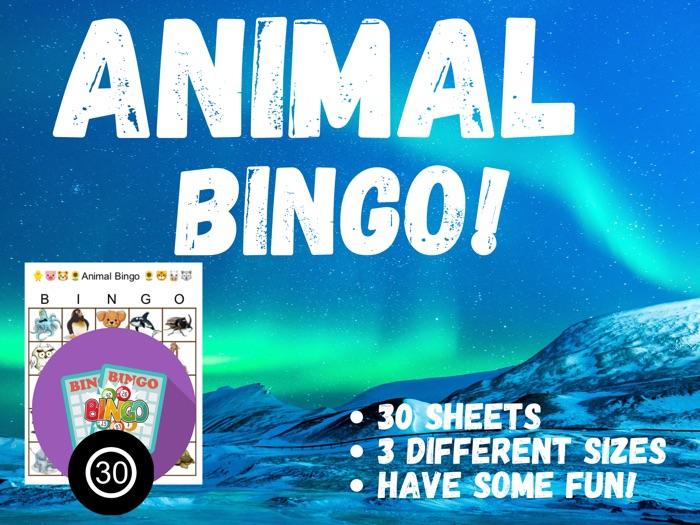 Digital Animal Picture Bingo