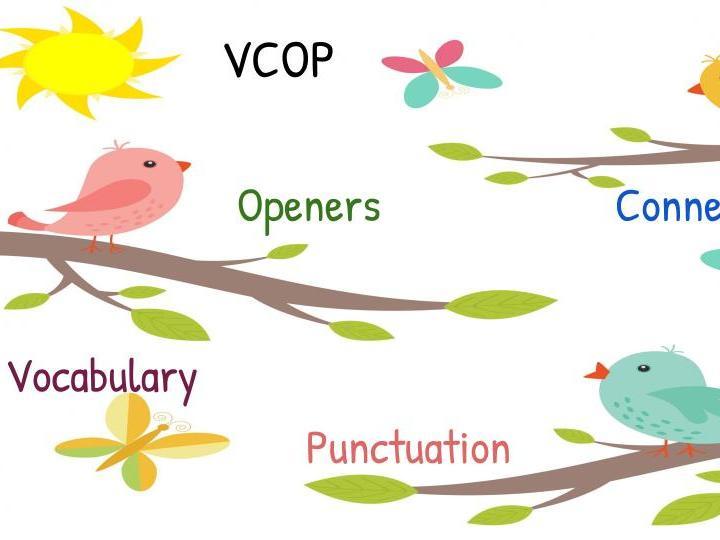 VCOP Activities