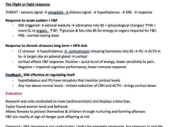 A-Level Psychology: Biopsychology Notes