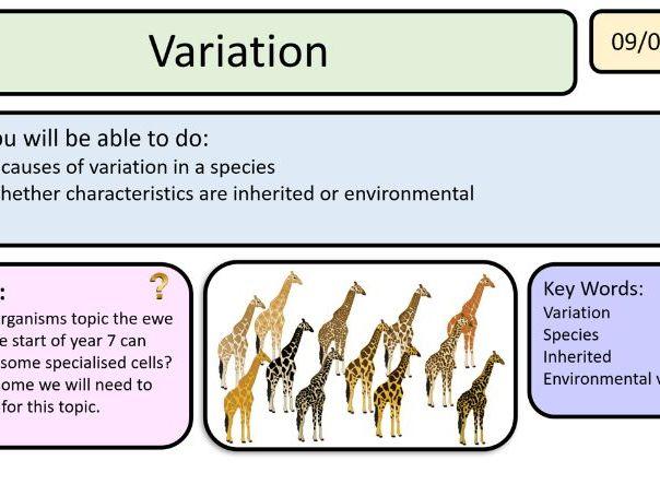 New Activate AQA 1 Genes - free lesson variation KS3