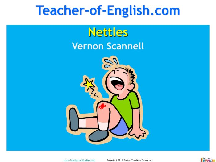 Nettles by Vernon Scannell (PowerPoint and worksheets)