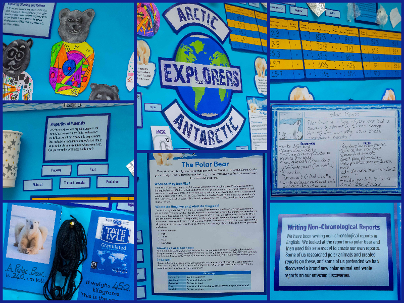 Arctic and Antarctic Explorers Display | Science, Maths, English and Art