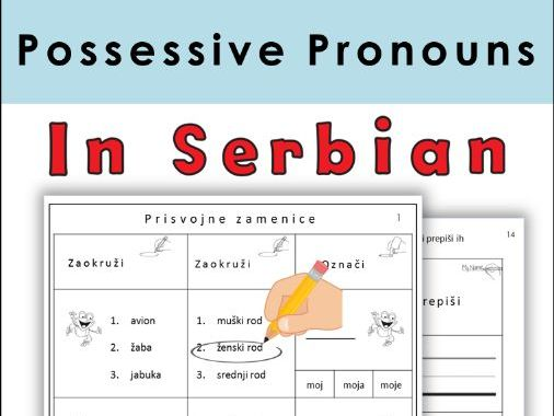 Serbian Possessive Pronouns Latin Alphabet