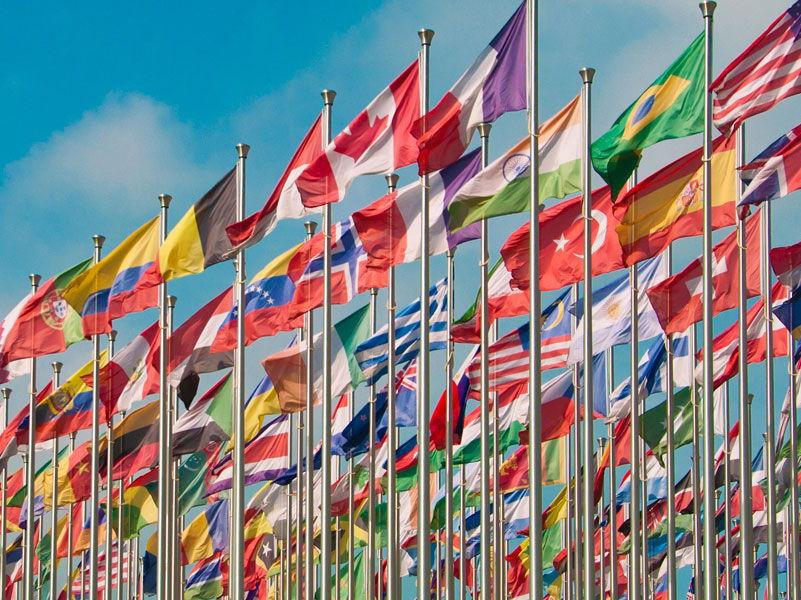 6. IGCSE Business and the international economy (Business Studies Unit - 6)