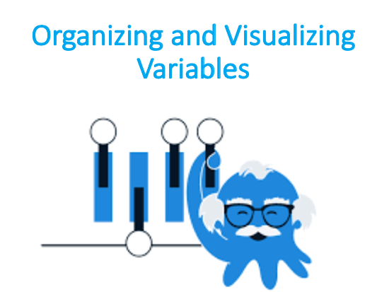Organizing and Visualizing Variables (Business Statistics)