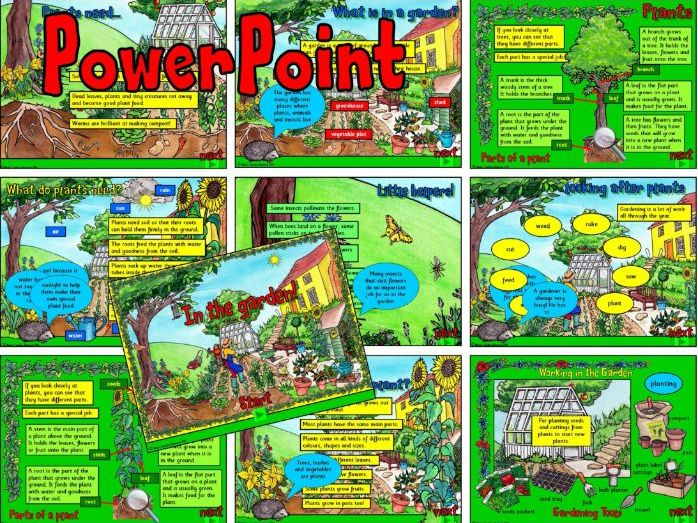 Growing Plants/Garden PowerPoint – KS1