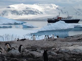 Resilience mitigation adaptation Antarctica