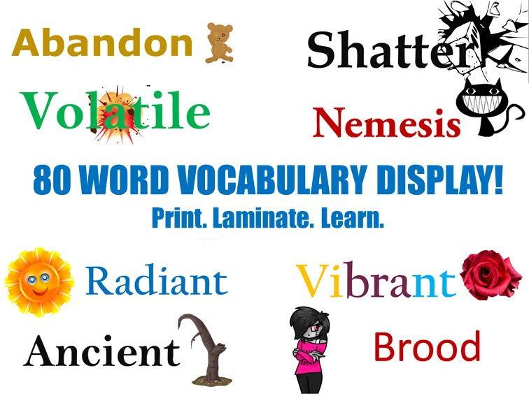 Vocabulary Display