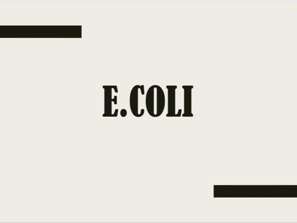 E.coli lesson
