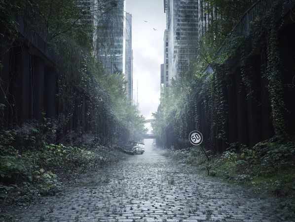 Creating a dystopia - creative writing and arts home project