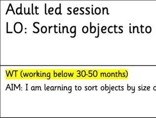 EYFS Maths Planning - Sorting