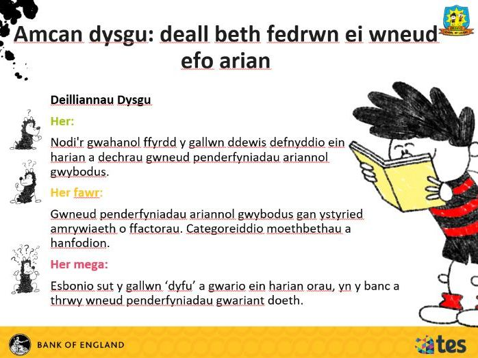 Lesson 4 Money and me - What can I do with money? (Welsh curriculum & language)