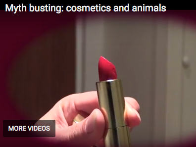 Cosmetics ARE NOT tested on animals