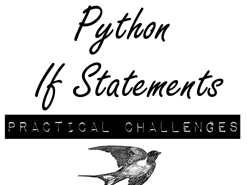 Python If Statements Practical Challenges