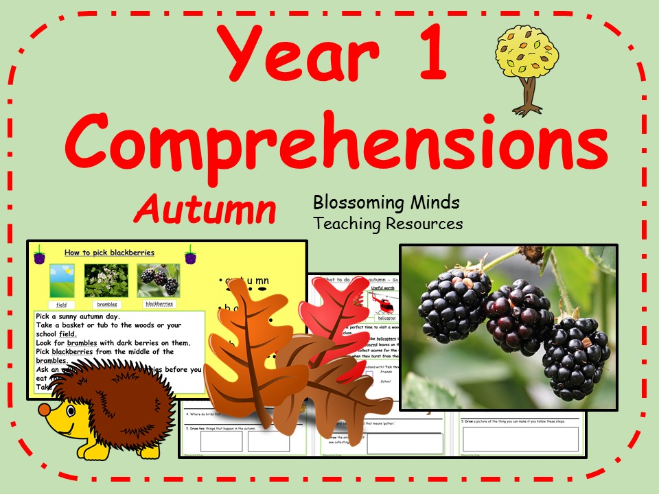 Year 1 comprehension - Autumn