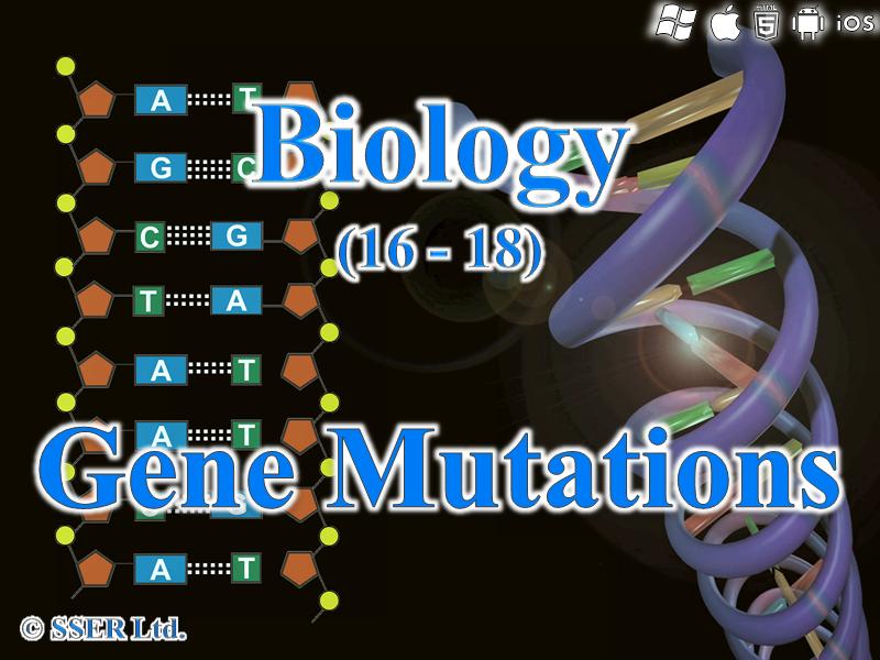 3.4.3 Gene Mutations