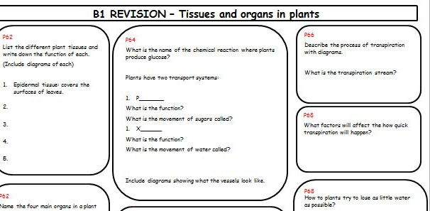 new spec aqa 2016 revision summary sheet on tissues and organs in plants by znawaz teaching. Black Bedroom Furniture Sets. Home Design Ideas