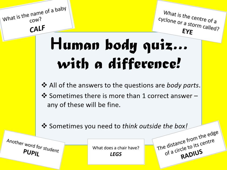 End of Term Quiz - Human Body