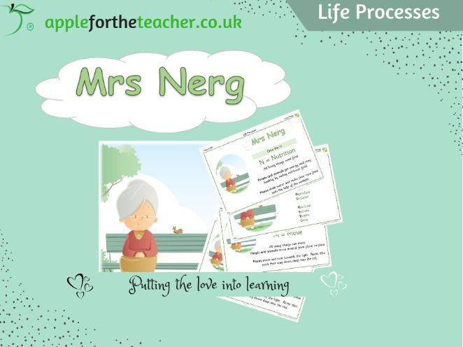 Year 4 Free Resource | Life processes Mrs Nerg