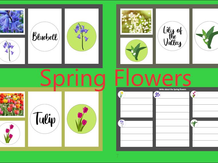 Spring Flowers KS1