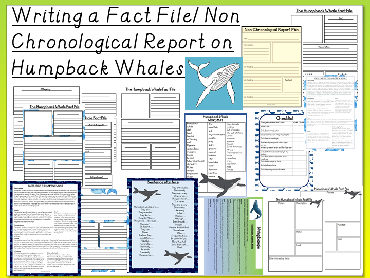 Humpback Whale- Writing a Fact File/ Non Chronological Report