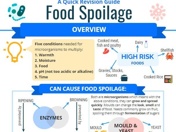 Food Spoilage Revision Infographic