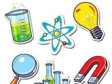 The Complete Year 4 Science MTP Bundle
