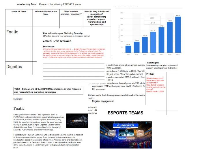 ESPORTS TEAMS unit 2 developing a marketing campaign
