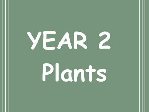 Year 2 Plants 6 week plan and resources